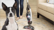 Best Stick Vacuum Cleaners for Pet hair