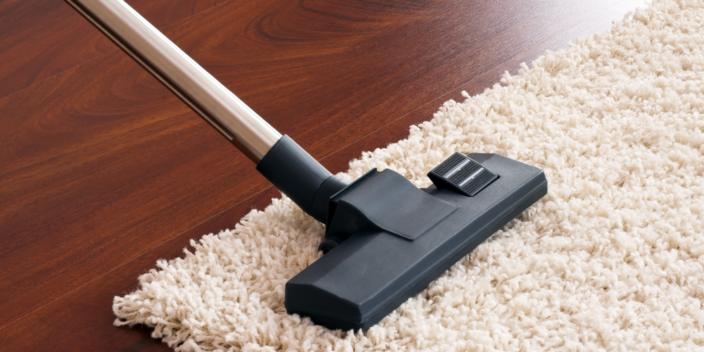 the best vacuum cleaner for hair
